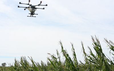 Practical Farmers of Iowa: Derecho crop damage and evaluating cover crop plans