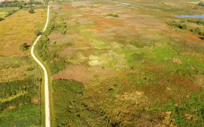 Pix4D: Mapping and spot spraying invasive weeds with drones